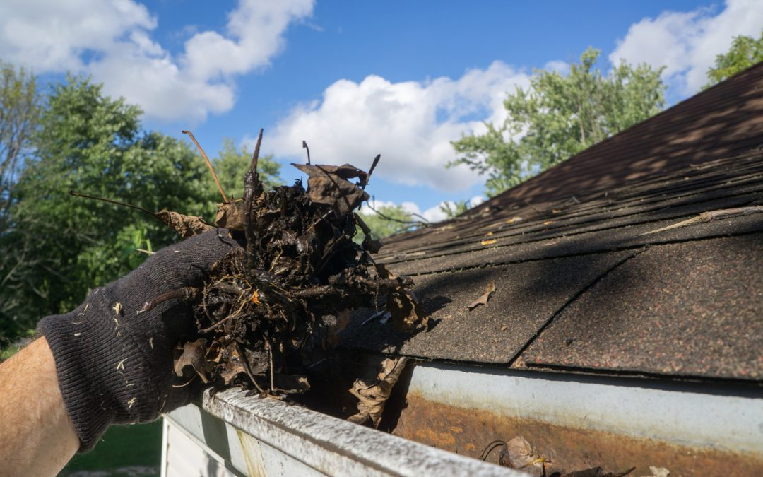Untreated Gutters risk damage to your home!